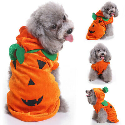 Pet Dog Halloween Clothes Puppy Costumes Fashion Pumpkin Pattern Jacket Coat UK