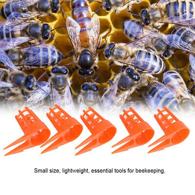 20Pcs//Set Bee Queen Cell Cover Beekeeping Tool Beekeeper Plastic Cage Protec CWI