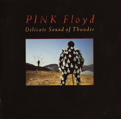 Pink Floyd - Delicate Sound Of Th - ID34z - EQ 5009 - vinyl LP