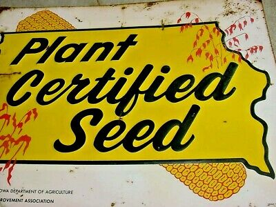 EAR CORN GRAPHIC 1950s Vintage IOWA CERTIFIED SEED CORN Old Embossed Tin Sign