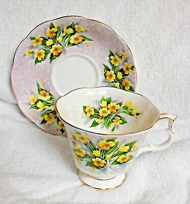 Royal Albert Festival Series Adelphi Yellow Primrose Cup and Saucer