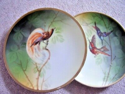 Antique Collectable porcelain BIRDS of Paradise plate,set of 2