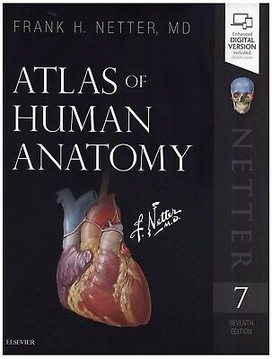 (PDF) Atlas of Human Anatomy, 7e (Netter Basic Science) 7th Edition