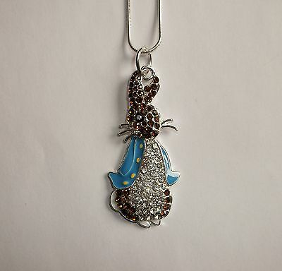 Unwanted PETER RABBIT Beatrix Potter Inspired Large Charm Gift NECKLACE
