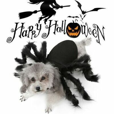 Spider Dog Cat Costume Halloween Spider Pet Costumes Outfit Apparel Furry Spide