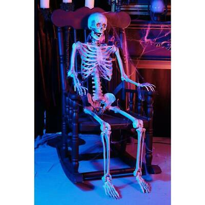 5ft Life Size pose-able Skeleton Halloween Prop Haunted House Skeleton Decor