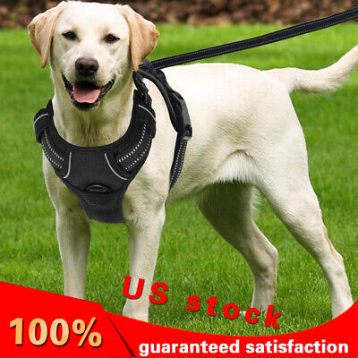 No Pull Dog Harness Adjustable & Durable Pet Dog Vest Harness For M To XL Dog