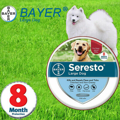 Bayer Seresto Collar for Large Dog over 18 lbs, Against Flea and Tick 8 Months