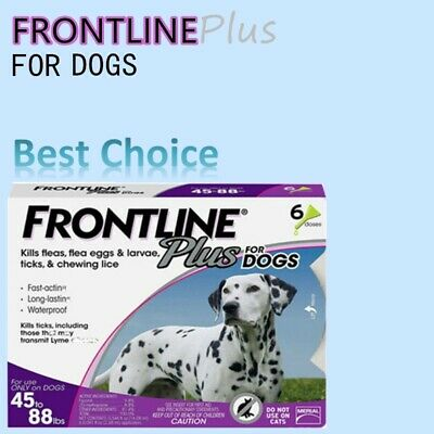 Frontline Plus for Dogs Large Dog (45-88 lbs) Flea and Tick Treatment. 6 Doses