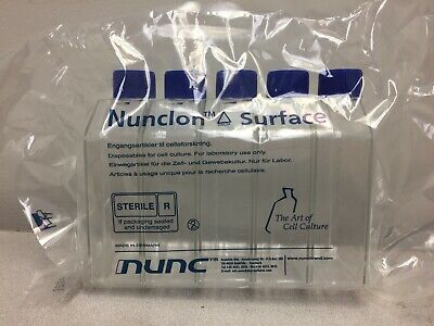 Nunc™ Cell Culture Treated Flasks with Solid Caps