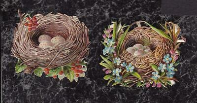 Small Victorian Die Cut Scraps Pair Bird Nests with Eggs Flowers Berries 2x1.5""