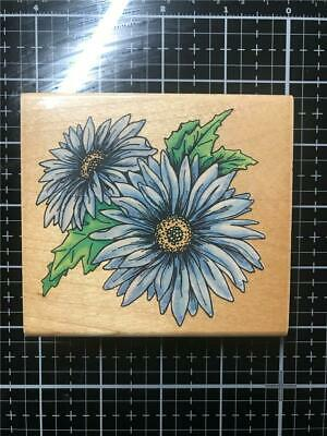 Butterfly Kiss Daisy Flowers Wood Mounted Rubber Stamp PENNY BLACK NEW 4233K