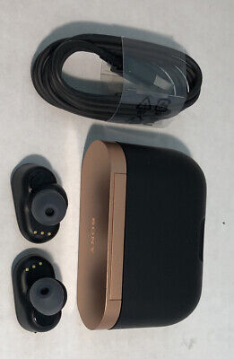Sony WF-1000XM3/B True Wireless Bluetooth HD Noise Canceling  Headphones -Black