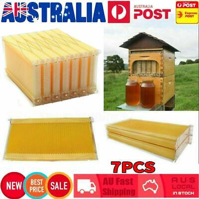 7x Auto Honey Beekeeping Beehive Bee Comb Hive Frames Harvesting Tubes Kit AU