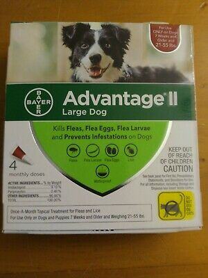 Bayer Advantage II for Large Dogs 21-55 Lbs - 4 Pack -  FLEA TREATMENT CONTROL