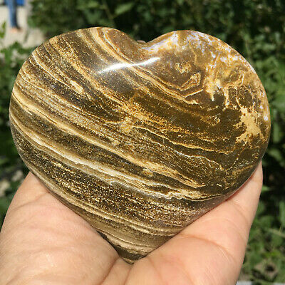 375g Natural Energy Stone Sea Stone Ancient Rock Specimen Heart-shaped