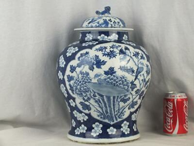 "Good Large 14"" 19Thc Chinese Porcelain Blue & White Prunus Birds Jar & Cover - 1"