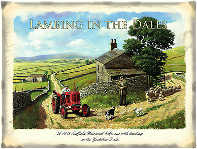 Lambing In The Dales (Nuffield Tractor) large steel sign 400mm x 300mm (og)