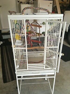 White Small Parrot Wheeled Cage-Used (including perches, toys, bowls, ect...)