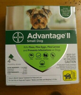 Bayer Advantage II for Small Dogs 3-10 Lbs - 4 Pack -  FLEA TREATMENT CONTROL