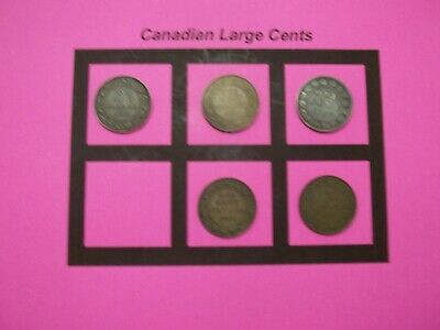 5 Canadian Large Cents 5 Coins  (CLC9)