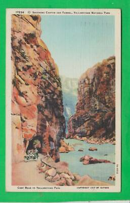 Postcard ~ Snoshone Canyon and tunnel Yellowstone Park ~ Vintage 9159