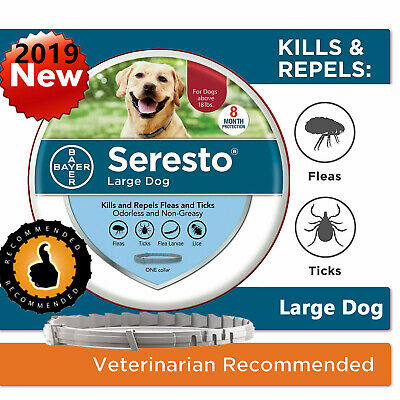 Bayer Seresto Kills and Repels Flea and Tick Collar for Large Dogs (over 18 lbs)
