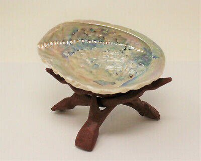 "LARGE 5"" - 6"" LIGHT Abalone Shell with Stand (Smudging Kit)"