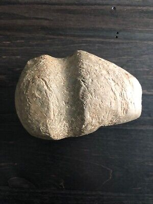 Native American Indian Grooved Stone Axe Head - Personal Find - NICE