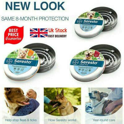 Flea and Tick Collar Protection Adjustable for Small Medium Large Dogs Cat