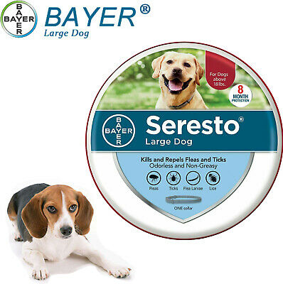 Bayer Seresto Flea & Tick 8 Month Collar for Large Dogs Over 18 Lbs-FREE SHIP