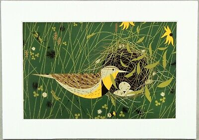Charley Harper Print Eastern Meadowlark Nesting Bird, White Matted, Small