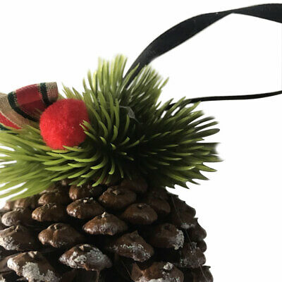 Florists Craft Pine Cone Office Natural DIY Party Dried Festival Christmas Decor