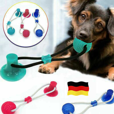 Haustier-Hundespielzeug-Boden-Saugnapf mit Ball Cat Pet Teeth Cleaning Playing