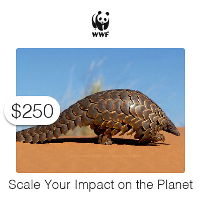 $250 Charitable Donation For: Scale Your Impact on the Planet