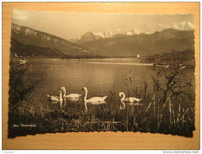 Am THUNERSEE Mountain Mountains Post Card Switzerland Suisse