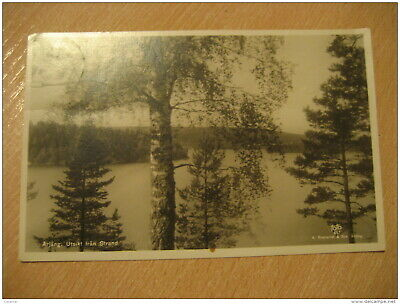 ARJANG Utsikt Fran Strand 1942 To Goteborg Cancel Tree Post Card SWEDEN