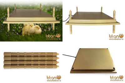 Titan Brooder Hen 45w Economical Poultry Heat Lamp Replacement 40x50
