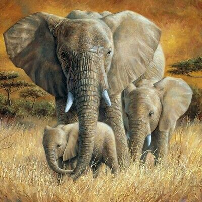 Full Drill DIY 5D Diamond Painting Elephant Art Home Decor Embroidery Kits Craft
