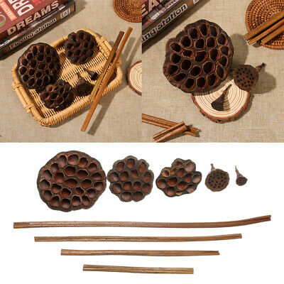 DIY Party Supplies Crafts Office Emulation Pressed Flowers Dried Lotus Flower