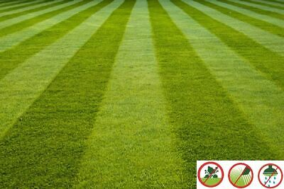 Luxury Artificial Grass 15mm Astro Garden Realistic Turf Fake Lawn Natural