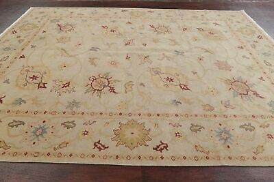 VEGETABLE DYE Muted Beige Antique Look Oushak Egyptian Area Rug Wool Carpet 8x10