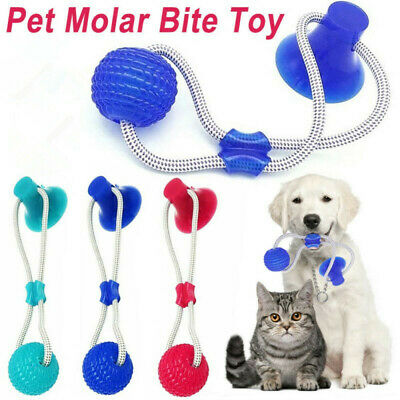 Haustier-Hundespielzeug-Boden-Saugnapf Mit Ball Cat Pet Teeth Cleaning Play toy