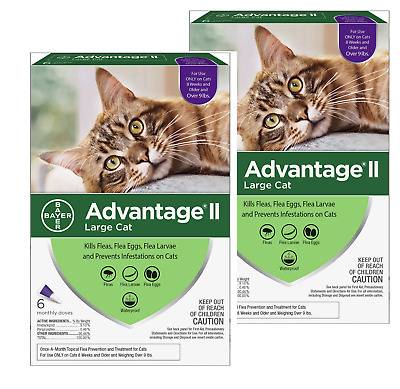 Bayer Advantage II Flea Prevention for Cats Over 9 lbs(6 Treatments) x 2 packs