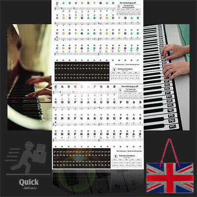 Piano Sticker Keyboard Music Note Chart Removable Decal 49, 37 ,61 or 88 Keys UK