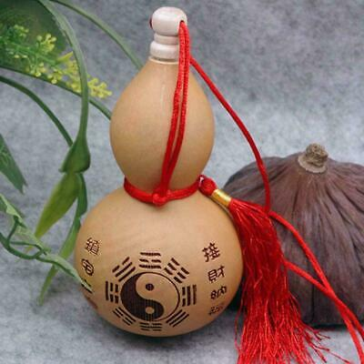 """Home craft (4""""tall) Potable Natural Real Dried Bottle ornaments Gourd decor D9Y7"""