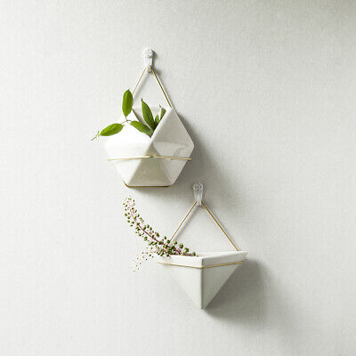 Triangle/Hexagon Wall Hanging Ceramic Planters For Indoor Plant Water Planting