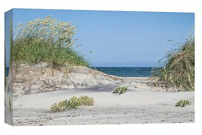 "PTM Images 9-103786 PTM Canvas Collection 8"" x 10"" - ""Pea Island"""