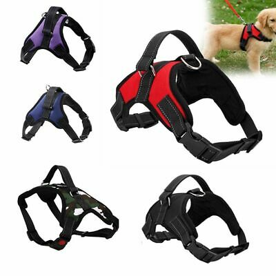 Shape Soft Padded No Pull Lead Walking Chest Strap Pet Harness Dog Vest Collar