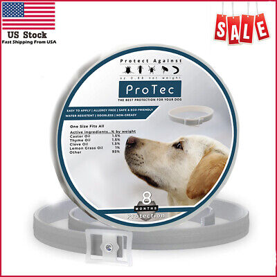 Dog Flea and Tick Control Collar - 8 Months Flea and Tick Control for Dogs